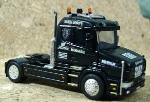 Scania Domin